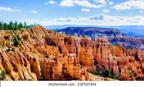 Bryce Canyon National Park, USA, Panoramic landscape, wide format