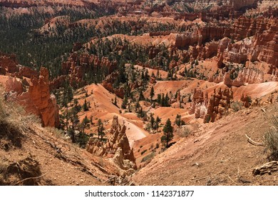 Bryce Canyon National Park, UT - June 19, 2018: View of Bryce Canyon. With juniper,  ponderosa pine and many small buttes that make up Bryce's landscape, this image exemplifies the American Southwest.