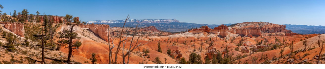 Bryce Canyon National Park, Utah, USA. Here is the largest collection of hoodoos in the world. Hoodoo is a tall, thin spire of rock that protrudes from the bottom of an arid drainage basin or badland.