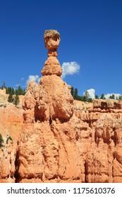 Bryce Canyon National Park, Utah-USA