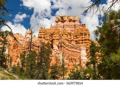 Bryce Canyon  , USA
