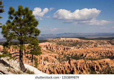 Bryce Canyoun National Park with a summer blue sky in the background