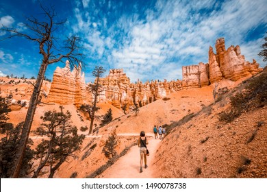 Bryce National Park, Utah / United States »; August 2019: A young woman walking along the giant eroded stones on the Queens Garden Trail