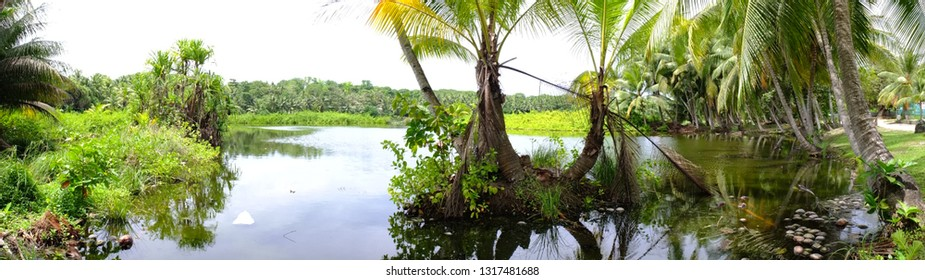 Buada lagoon, Nauru (3rd smallest country in the world)