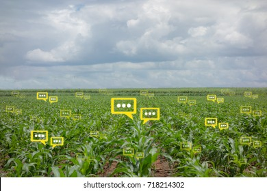 the bubble chat data the detect by futuristic technology in smart agriculture with artificial intelligence to improving yield, efficiency, and profitability in the farm