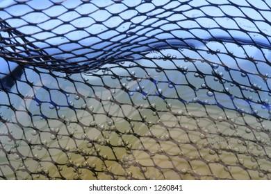 Bubbles on fishnet