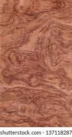 Bubinga Pommele. High resolution of exotic wood background.
