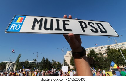 """Bucharest, Romania - August 10, 2019: A man keep in his hand a car registration pad on that is written """"Muie PSD"""" (suck it PSD) at """"10 August rally"""" against the ruling Social Democratic Party"""
