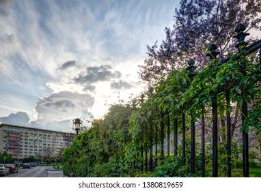 Bucharest/Romania - May 01 2014: Valter Maracineanu street near Sala Palatului concert hall
