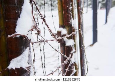 Bucina Iron Curtain memorial area. Border between West Germany and Czechoslovakia in communist times. National Park Sumava, Czech Republic