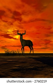 A buck standing at attention in the sunset