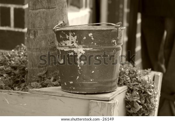 bucket in the garden
