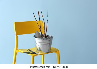 Bucket with gardening tools and seedling on chair against color background