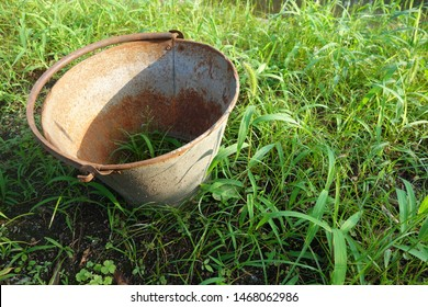 Bucket with holes in the grass.