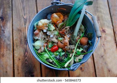 Bucket of organic waste on wooden floor