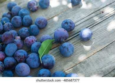 Bucket of ripe plums on wooden shabby background