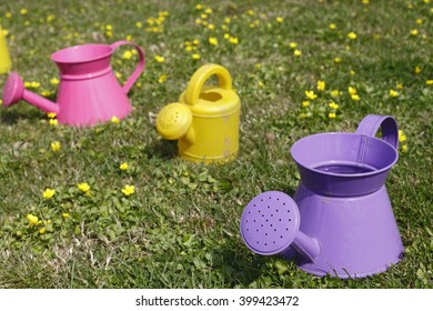 buckets of water to water the flowers prepared for the children