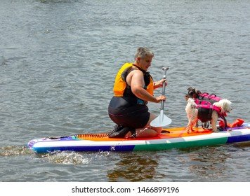 Buckingham, Quebec/Canada - July 29th, 2019: woman with two small dogs on paddle board