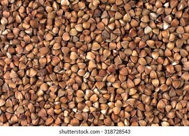 buckwheat texture as background