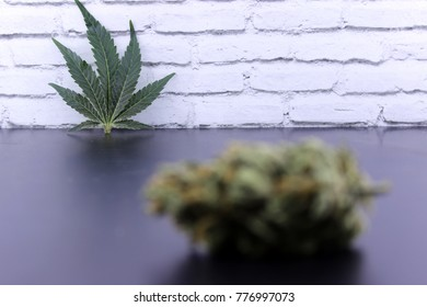 Bud and marijuana leaf posing on black ground with a white background. Part of the photo out of focus.