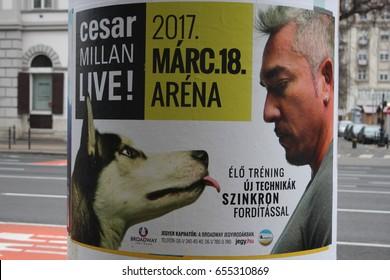 Budapest: feb 1. 2017 - Dog Whisperer with Cesar Millan on board.