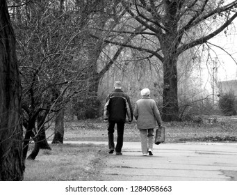 Budapest, Hungary - 11.18.2017: old couple walking on a winter path side by side in diminishing perspective in monochrome finish with bare trees in foggy weather with soft grey tones