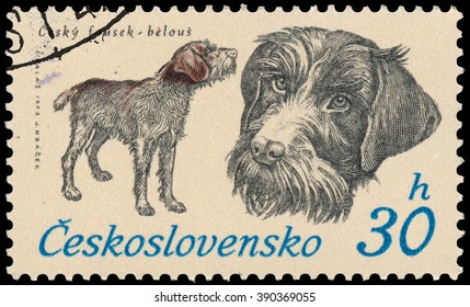 BUDAPEST, HUNGARY - 12 march 2016:  a stamp printed in Czechoslovakia shows Czech Whisker, circa 1973