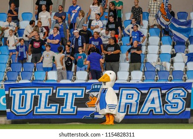 BUDAPEST, HUNGARY - AUGUST 11, 2018: The mascot 'Gedeon' watches the match in front of supporters during MTK Budapest v DVTK match at Nandor Hidegkuti Stadium.