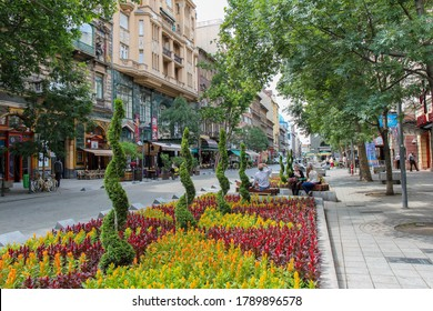 Budapest, Hungary - June 28th 2013: Flower bed on a Budapest street in Summer, Hungary