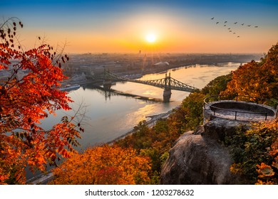 Budapest, Hungary - Panoramic skyline view of Budapest at sunrise with beautiful autumn foliage, Liberty Bridge (Szabadsag Hid), birds in the sky and lookout on Gellert Hill