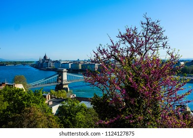 Budapest, Hungary. Panoramic view of Buda Castle Royal Palace with Szechenyi Chain Bridge, St.Stephen's Basilica, Hungarian Parliament and Matthias Church at spring sunny day
