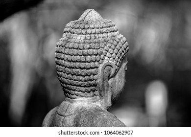 Buddha in a black and white back view