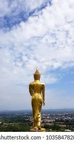 The Buddha Center