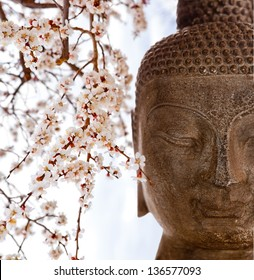 Buddha face with cherry blossoms