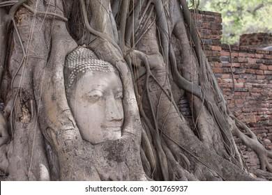 Buddha Face, Wat Mahathat, Ayutthaya,Wat Mahathat Yuwarajarangsarit Rajaworamahavihara is a Buddhist temple in Bangkok, Thailand. It is one of the 6 royal temples of the highest class