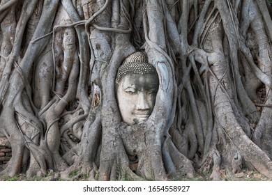 Buddha head in the Bodhi tree roots at Wat Mahathat, Ayuttaya province, Thailand.