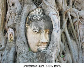 Buddha Head Embedded in Bayan Tree at Wat Mahathat, Ayuthaya, Thailand.