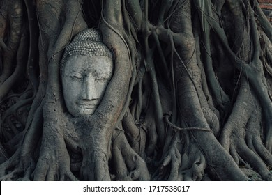 Buddha head in tree roots in Ayuthaya , Thailand