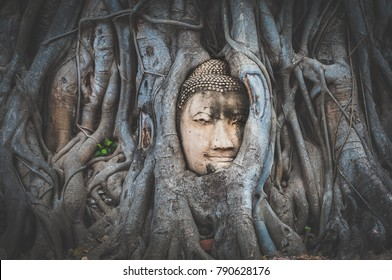Buddha head in tree roots at Wat Mahathat temple, Ayutthaya, Thailand, Asia. Vignette and color fade out effect