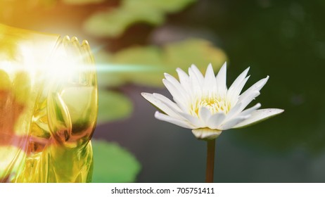 Buddha and lotus for peaceful in your mind