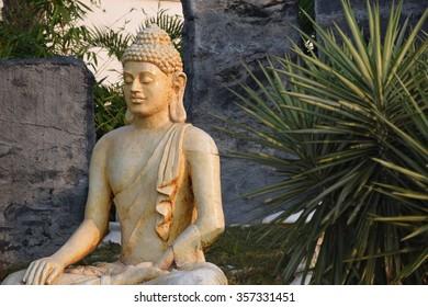 The Buddha In Meditation