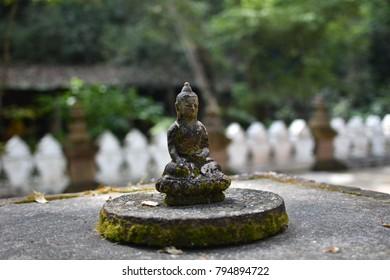 Buddha natural peaceful