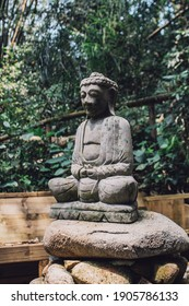 buddha photo in the forest
