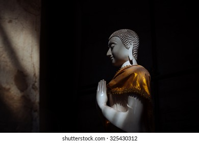 Buddha in the shadow light at Ayutthaya historical park in Thailand