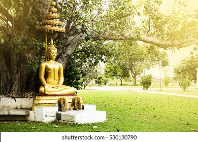 Buddha sitting under the tree