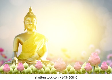 Buddha statue. background blurred flowers and  sky with the light of the sun.