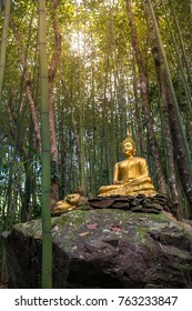 Buddha statue in bamboo forest in Thailand