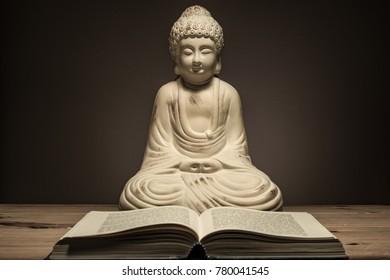 Buddha statue with book in moody light scene.