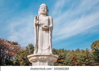 buddha statue in Donghwasa temple, Daegu, Korea