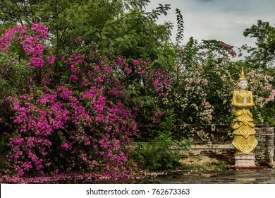 a buddha statue with flowers in a temple in Burma
